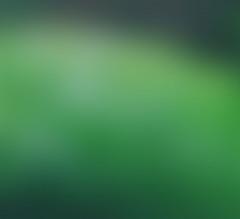 Background 9_mini